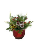 Holiday Arrangement - Red Patio Pot - Multiple Styles