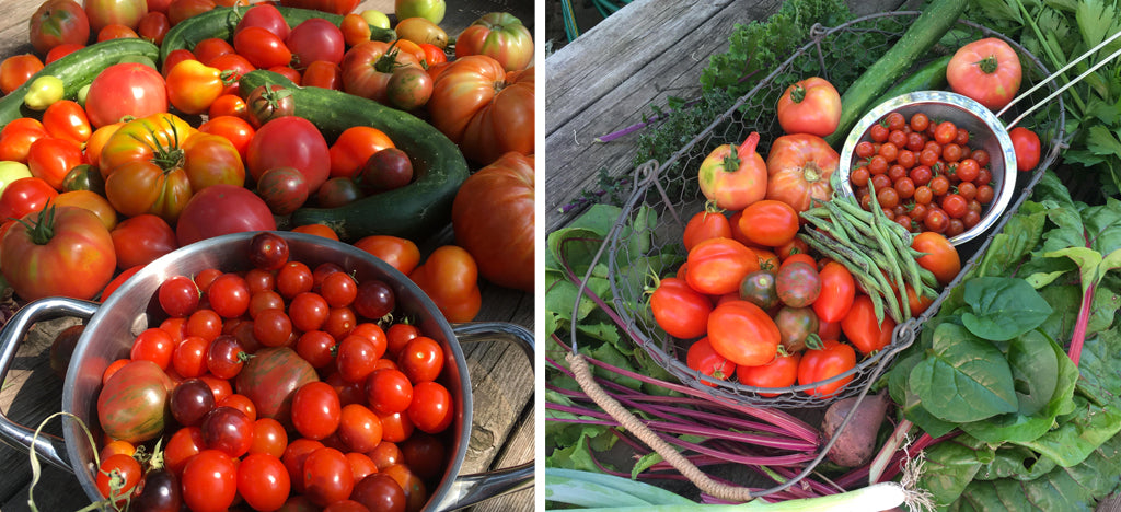GROW INSPIRED: FROM GARDEN TO PANTRY WITH AUTHOR STEPHANIE THUROW
