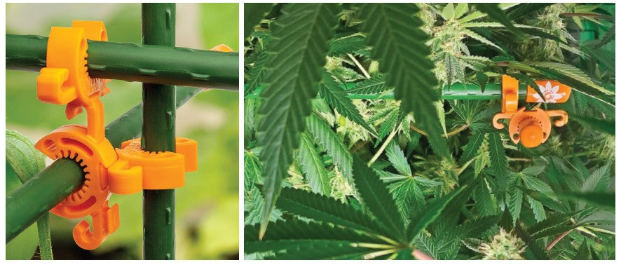 Build sturdy cannabis supports in a snap