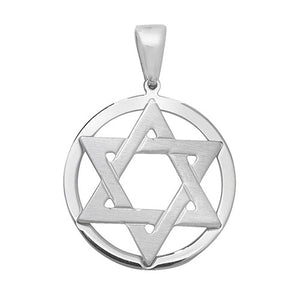 Star of David / shield of David in circle of life pendant