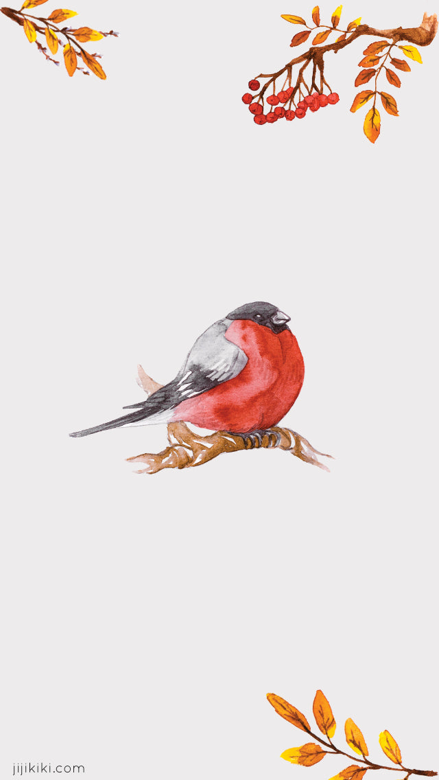 Free Winter Christmas iPhone phone mobile wallpaper watercolour bird