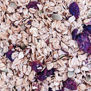 Maple Pecan Granola With Pumpkin Seeds And Cranberries