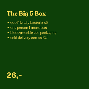 "Kraut & Kimchi Box - ""The big 5"" - SauerCrowd"