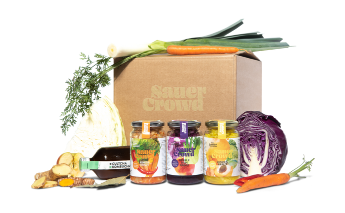 Small Gut-Mind Box - SauerCrowd
