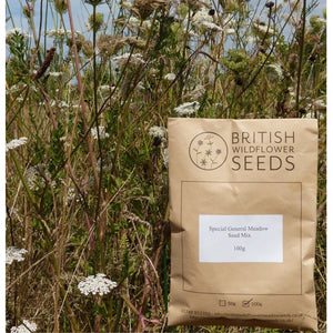 Special General Meadow Seed mix