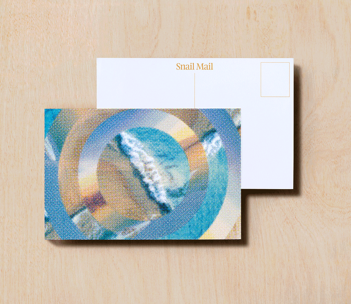 Snail Mail Postcard  - Rolling Wave After Rolling Wave After Rolling Wave