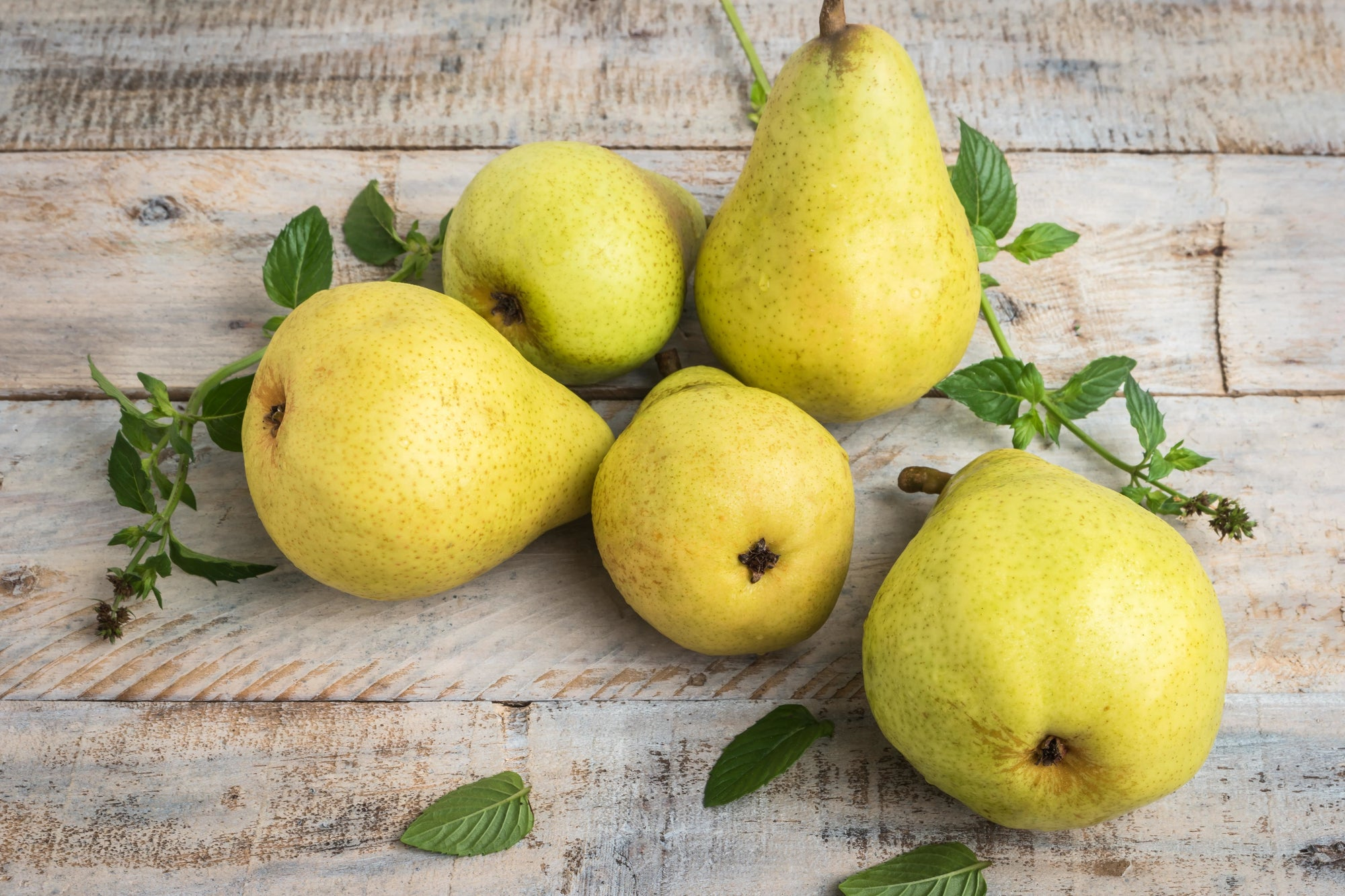 Pear Facts: 10 Interesting Insights About The Fruit
