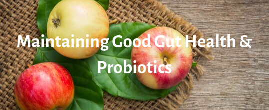 Maintaining Good Gut Health and Probiotics