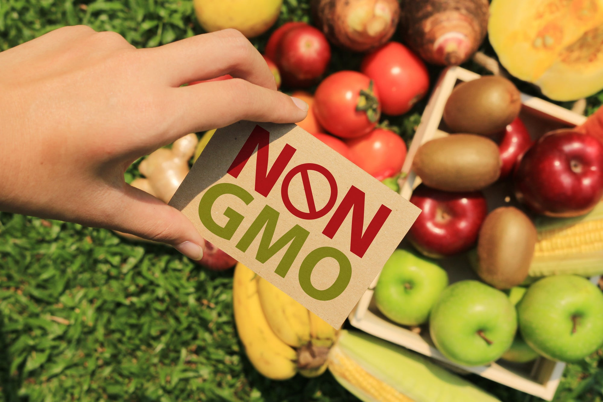What is Non-GMO Fruit and Why Should We Eat It?