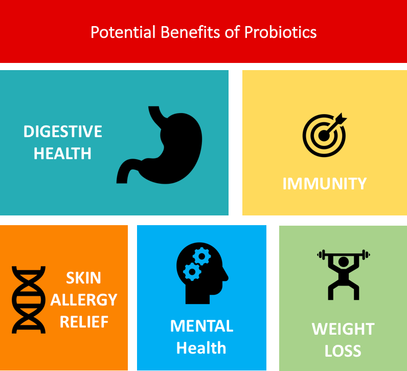 Potential Benefits of Probiotics