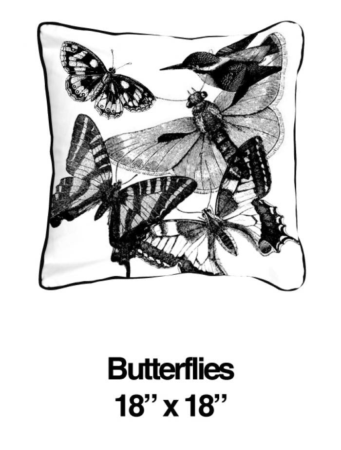 Butterflies And Birds Black - ModShop1.com