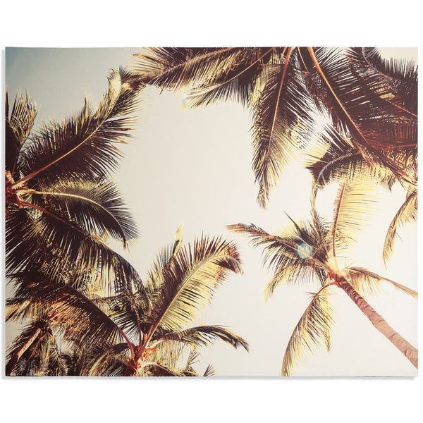 Under the Palms - ModShop1.com