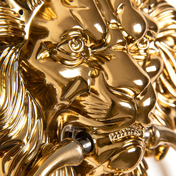 Lions Head Door Knocker, Brass (Set of 2) - ModShop1.com