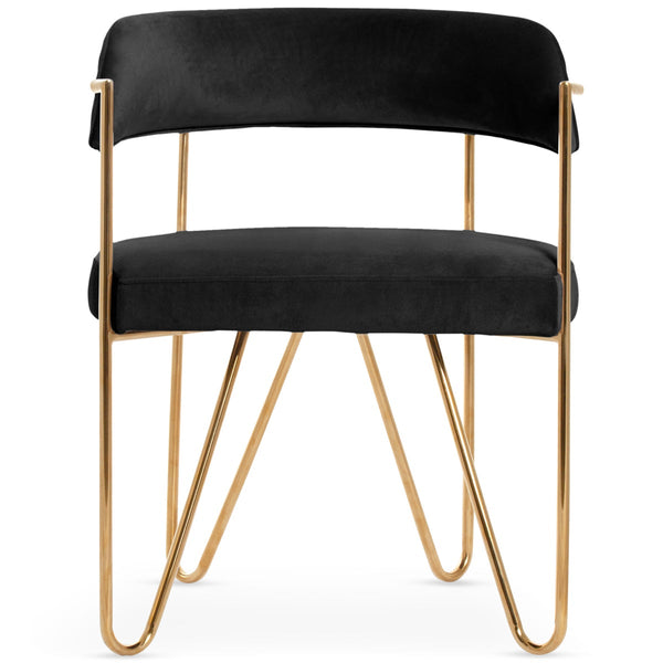 Sicily Dining Chair in Velvet - ModShop1.com
