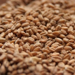 Briess Red Wheat 1lb