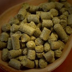 German Northern Brewer Hop Pellets 1oz