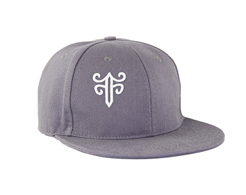 Classic Fitted Hat in Gray