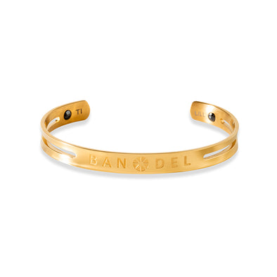 Titanium Bangle Gold