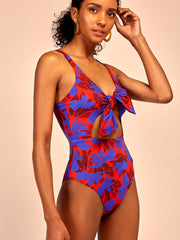 Ambar One-Piece