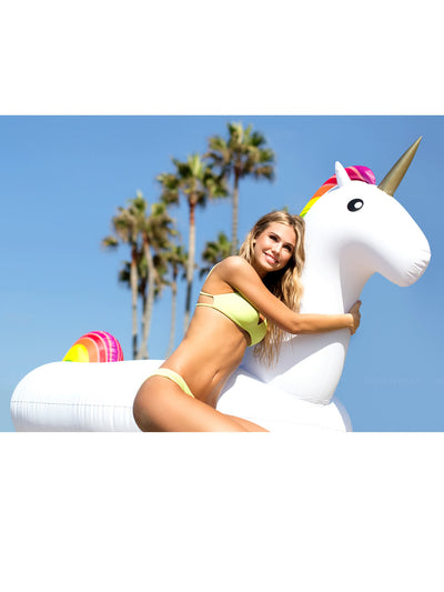 Giant Unicorn
