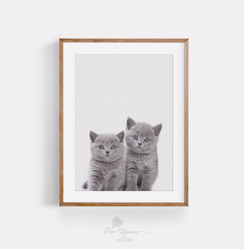 Twin baby cat print art, cute twin cat baby wall decor poster - P0022