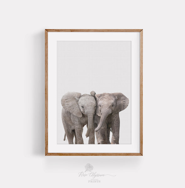 Cute baby twin elephant print art, twin elephant baby room decor - P0028