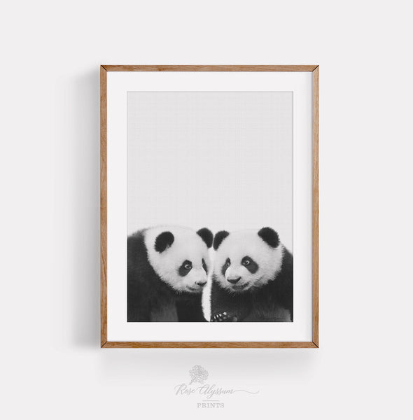 Twin baby panda print art, moving gift, new house gallery - P0029