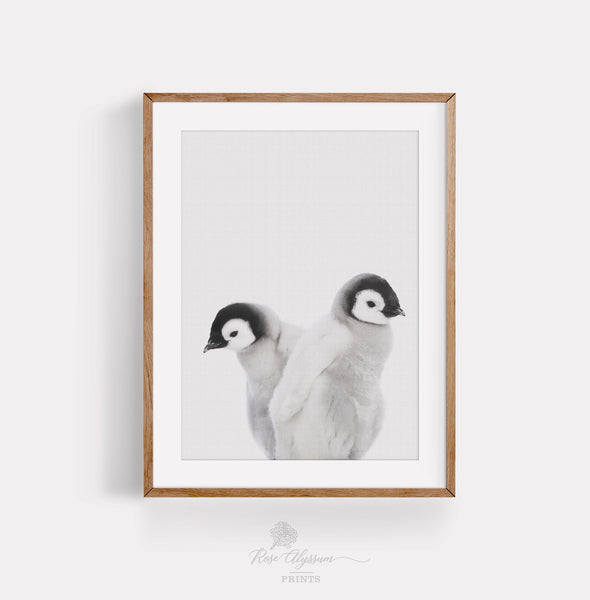 Twin penguin baby wall art, twin baby penguin print art - P0035