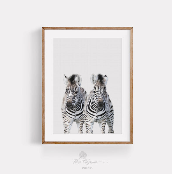 Baby zebra print art, twin zebra baby wall art, twin zebra kid room wall decor - P0040