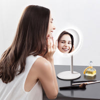 Rechargeable Daylight Vanity Mirror
