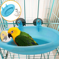 Bird Bathtub With Mirror