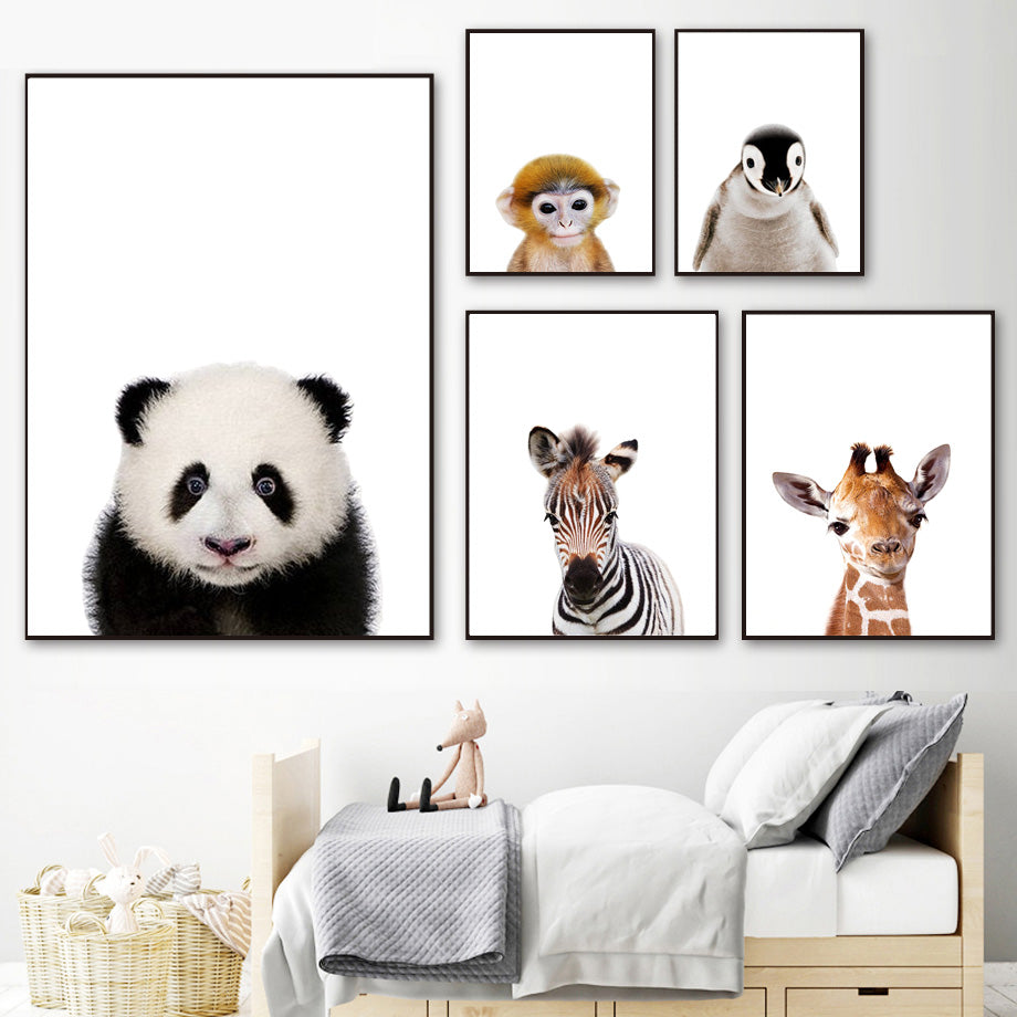 affiche photographies d'animaux - kidyhome