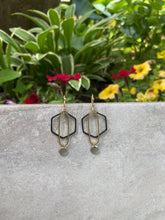 Load image into Gallery viewer, IPA Earrings