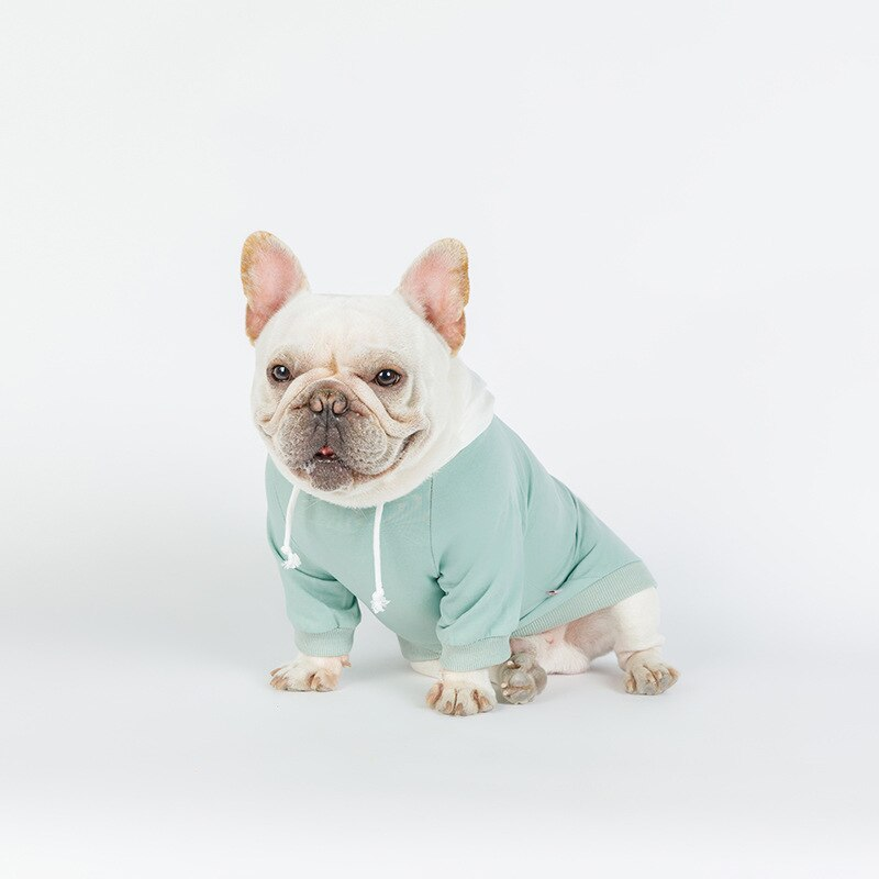 Cute Pastel Colored Hoodie