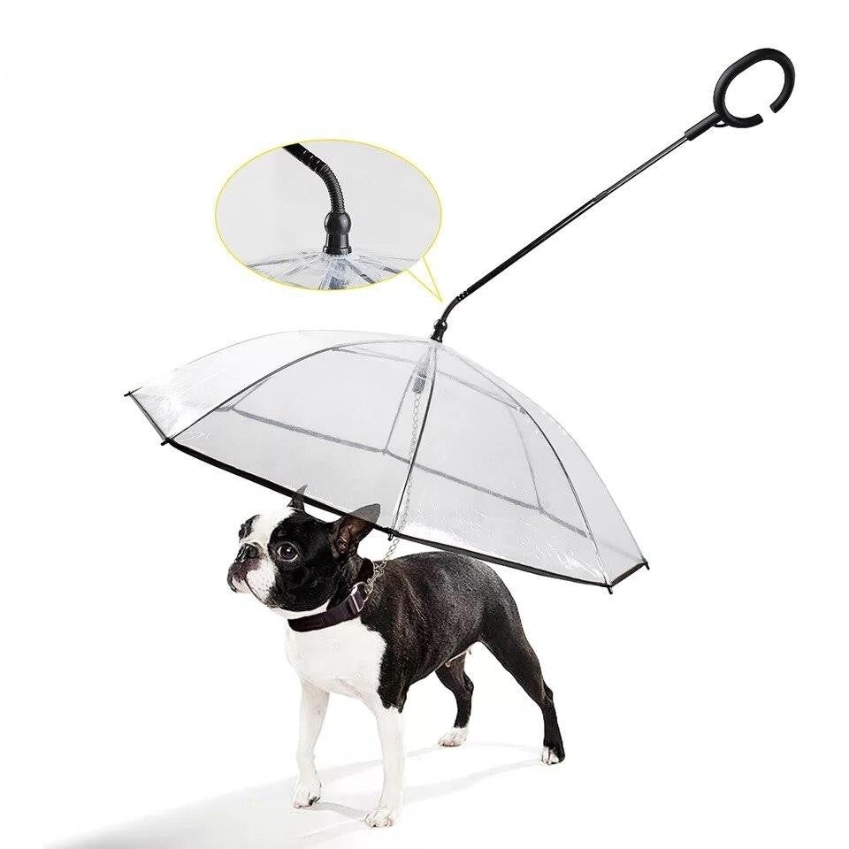 Transparent Dog Umbrella