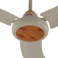 Royal Galant Ceiling Fan - CHARM
