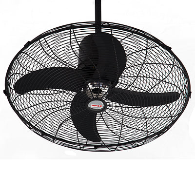 Royal Deluxe Circo Fan