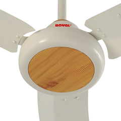 Royal Galant Ceiling Fan