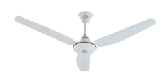 Royal Hi Standard Ceiling Fan