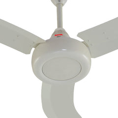 Royal Noble Ceiling Fan