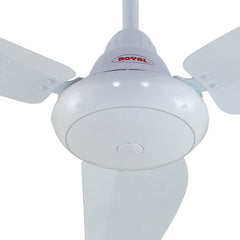 Royal Opal Ceiling Fan