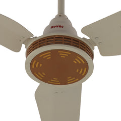Royal Lifestyle Ceiling Fans - RL-055 - Revolve