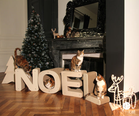 Griffoirs lettres noel Homycat