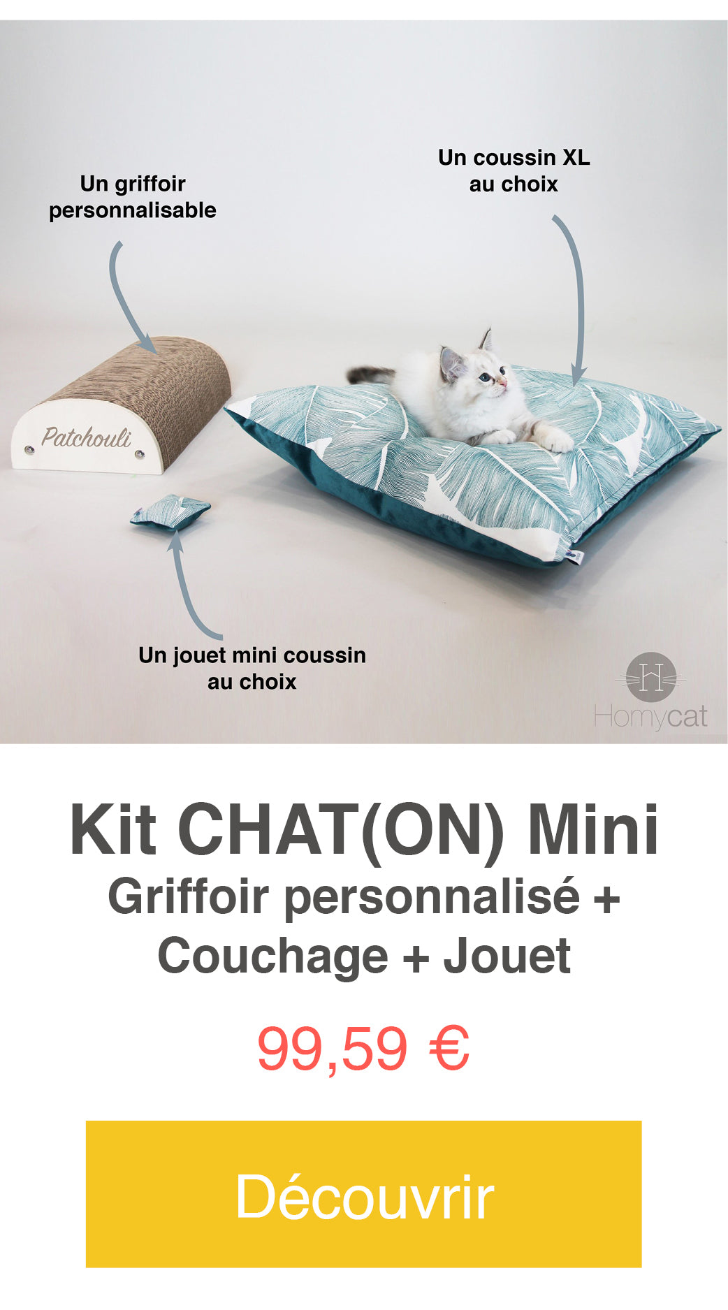 kit chaton homycat couchage coussin griffoir jouet cataire chat