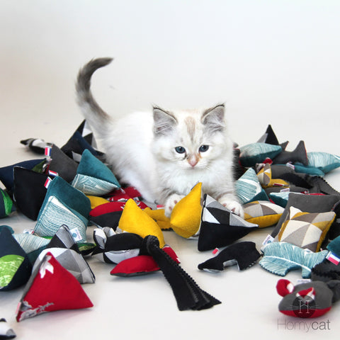 Jouets pour chats cataire