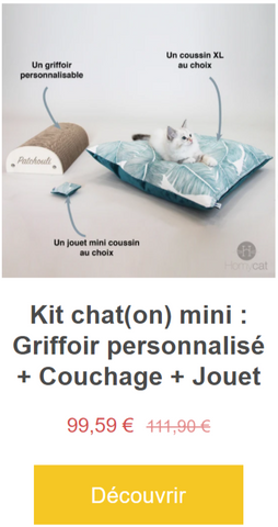 kit-chaton-mini-griffoir-a-personnaliser-au-nom-chat-couchage-chat-france-housse-deco-jouet-cataire