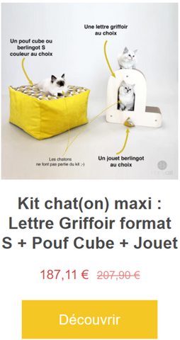 kit-chaton-maxi-accessoires-chat-design-francais-griffoir-en-forme-lettre-alphabet-chat-jouet-herbe-a-chat-couchage-chat