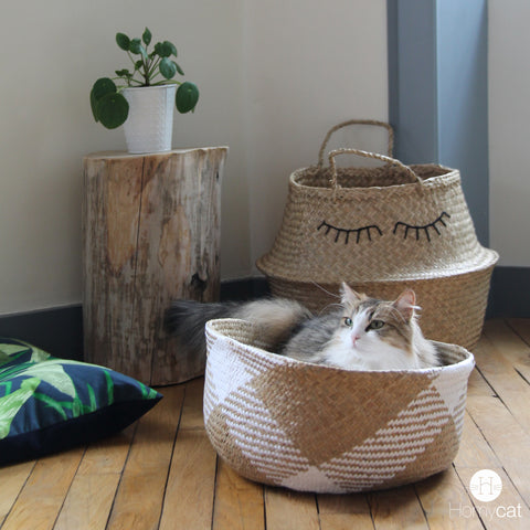 panier-chat-coussin-couchage-chachette