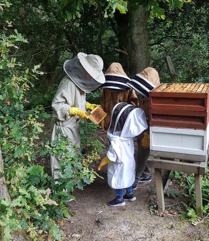 Young beekeepers in the woodland apiary