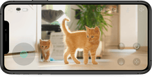 Load image into Gallery viewer, Ebo Pro Catpal - Standard Luxury Set